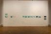 """Exhibition view of """"Die wunderbare Welt der Pilze"""" in """"...und es zog mich duch die Bilder"""", Landesgalerie Linz."""